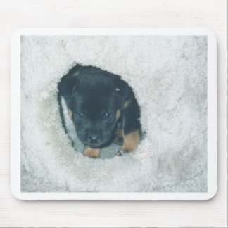 maxie puppy mouse pad
