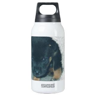 maxie puppy thermos bottle
