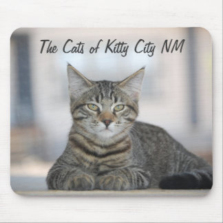Maximiano 1, The Cats of Kitty City NM Mouse Pad