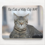 Maximiano 1, The Cats of Kitty City NM Mouse Pads