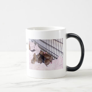 Maximum Security KennelsProtecting Your Home,On... Magic Mug