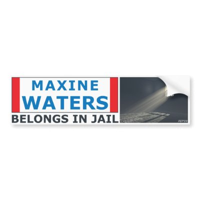 maxine waters ugly