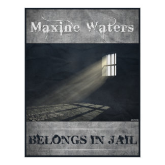 Maxine Waters Poster