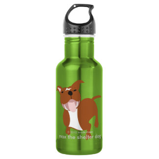 Max's Stay Hydrated Stainless Steel Water Bottle