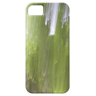 Max's Woods Light iPhone SE/5/5s Case
