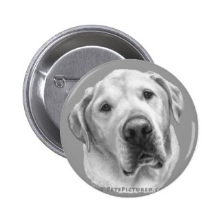 Maxwell, Lab-Pitbull Mix Pinback Buttons
