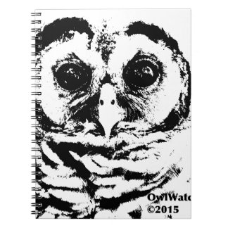 May 2015 - Owlet Notebook