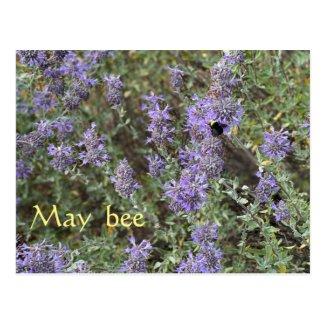 May Bee Postcard