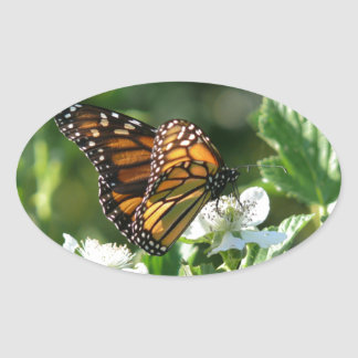 May Butterfly Oval Sticker