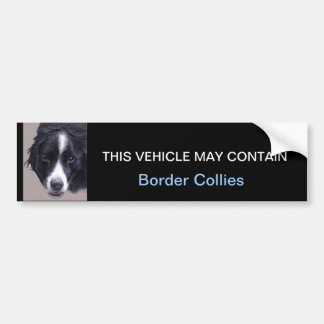 may contain Border Collies Bumper Stickers