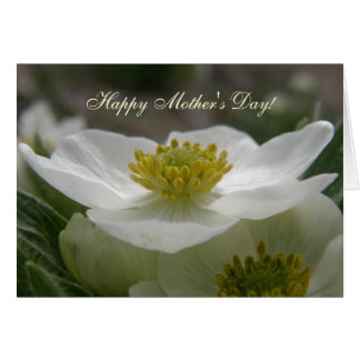 May Flower, Happy Mother's Day Greeting Card