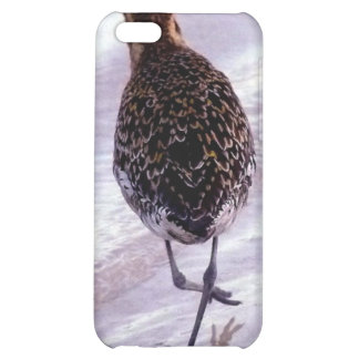 May I have this dance! iPhone 5C Cases