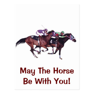 May The Horse Be With You! Postcard