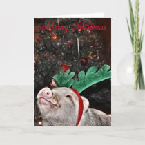 May the spirit of Christmas, Pig Greeting Card