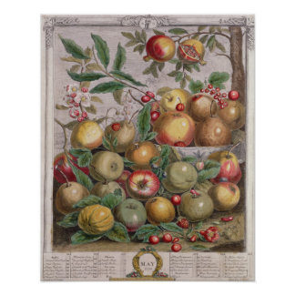 May, 'Twelve Months of Fruits' Poster