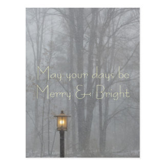 May your days be Merry and Bright Holiday Postcard