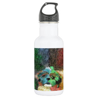 Maya and the seasons stainless steel water bottle