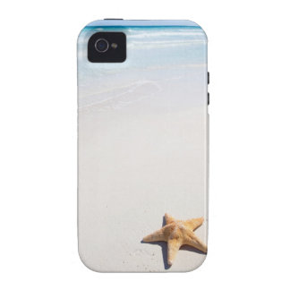 Maya de Riviera Vibe iPhone 4 Carcasas
