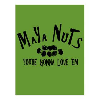 Maya Nuts Postcard