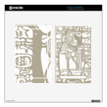Mayan Blood and Glyphs Kindle Fire Skins