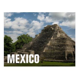 Mayan Pyramid Postcard