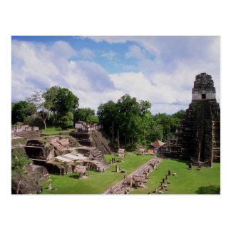 Mayan remains, Tikal, Guatemala Postcard