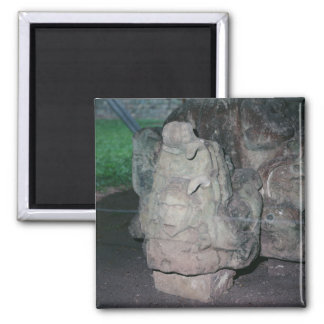 Mayan Ruins N.W. Honduras Photo Designed Color Magnet