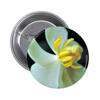 Mayapple Pin