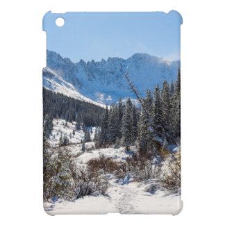 Mayflower Gulch iPad Mini Cases
