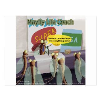 Mayfly Life Coach Funny Postcard