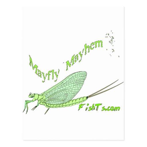 MayFly Mayhem Postcards