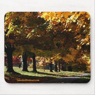 Maymont Autumn Trees Mouse Pad