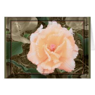 Maymont Tulip Card