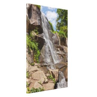 Maymont Waterfall Canvas Print
