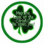 Mayo la suerte del irlandés… esculturas fotograficas