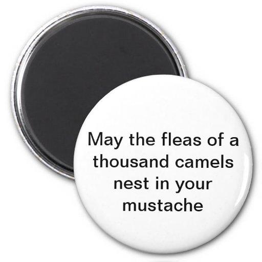 Mayo las pulgas de mil camellos jerarquizan en su  iman para frigorífico