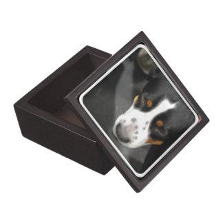 Mayor caja suiza del perrito del perro de la monta cajas de joyas de calidad