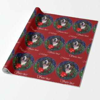 Mayor navidad suizo del perro de la montaña papel de regalo