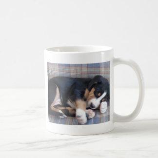 mayor perrito suizo del perro de la montaña taza