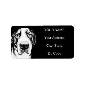 Mayor perro suizo de la montaña etiquetas de dirección