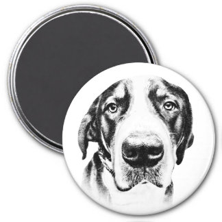 Mayor perro suizo de la montaña imán redondo 7 cm