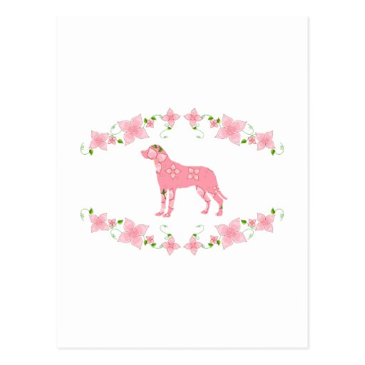 Mayor perro suizo de la montaña tarjetas postales