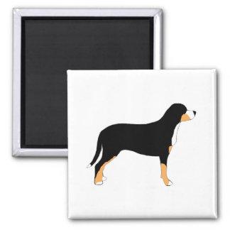 mayor silueta suiza del color del perro de la mont imán cuadrado