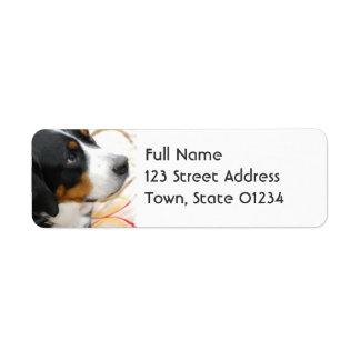 Mayores etiquetas de correo suizas del perro de la etiqueta de remitente