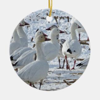 Mayores gansos de nieve en el campo de maíz adorno navideño redondo de cerámica