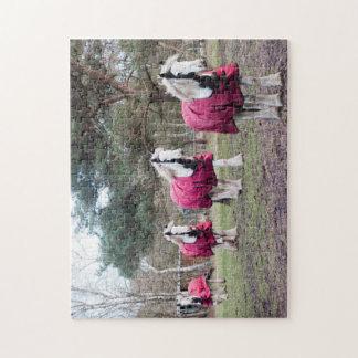 Mazorca coloreada pintada rompecabezas con fotos
