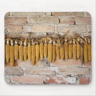 Mazorcas de maíz secadas mouse pad