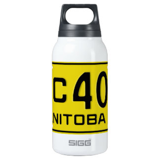 MB52 SIGG THERMO 0.3L INSULATED BOTTLE