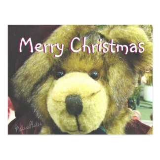 MC-personalizar de Teddybear Postal