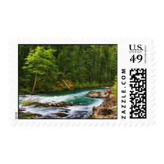 McCLOUD RIVER #1 Postage Stamp